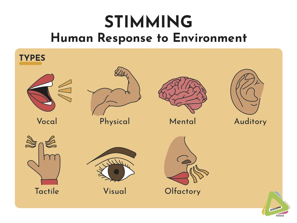 This image shows the different types of stimming